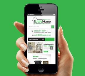eBay Mobile Portfolio